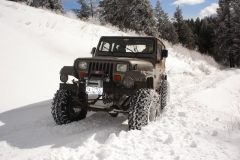 Snow_Run_Jan06_12