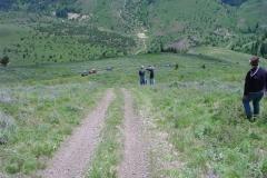 Tiddie_Springs_Trail_Jun04_20