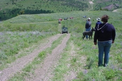 Tiddie_Springs_Trail_Jun04_21